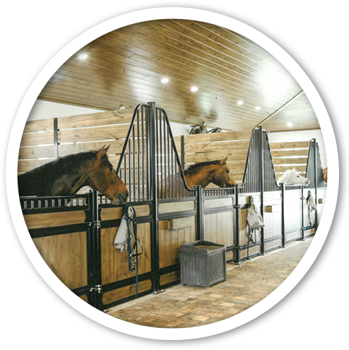 equestrian-construction